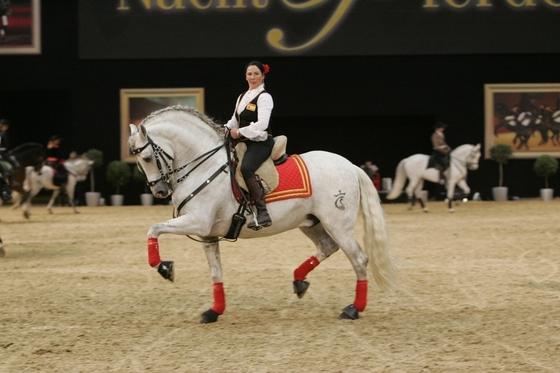 Добро пожаловать в Ганновер на конную выставку!